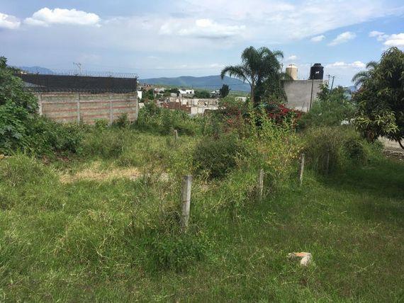 """Terreno en Venta en LOS PLATANALES <span itemprop=""""addressLocality"""">Cuernavaca</span>"""