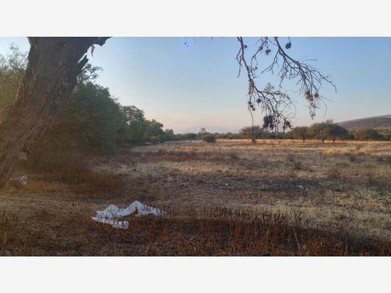 Finca/Rancho en Venta en Colon