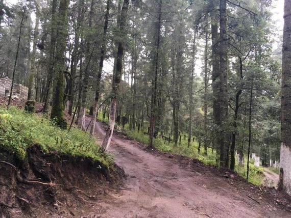 Terreno en Venta en Atrévete a cambiar tu vida, regalate un hermoso lugar en el Bosque de Hidalgo ¡!