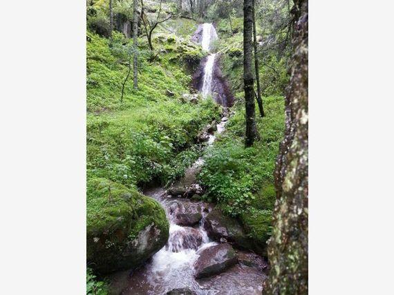 Terreno en Venta en Atrévete a cambiar tu vida, regálate un hermoso lugar en el Bosque de Hidalgo ¡!