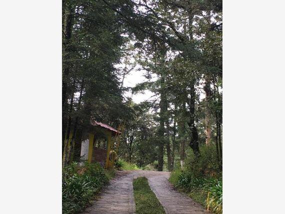 Terreno en Venta en Cambia tu vida y crece tu patrimonio, exclusiva propiedad EN Real del Monte ¡!!