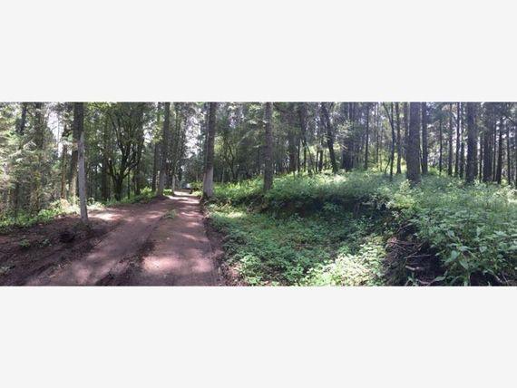 Terreno en Venta en Un paraíso a tu alcance, en el bosque de Real del Monte !!!