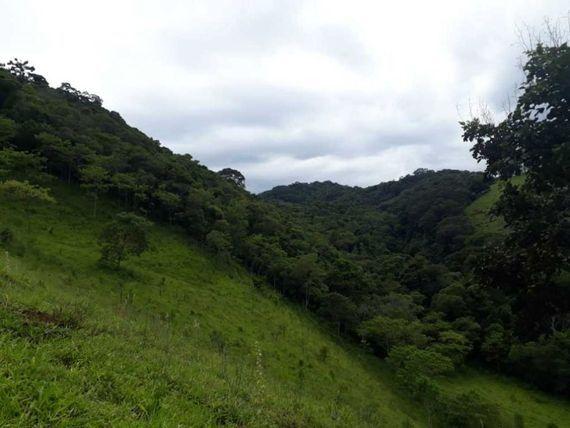 •Sítio a Venda na região Sul de Minas-MG