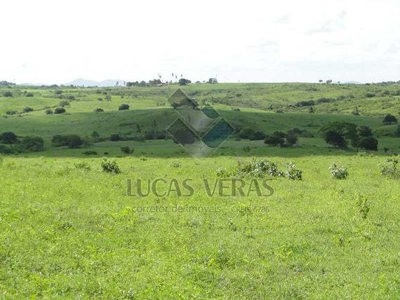 """Fazenda na região de <span itemprop=""""addressLocality"""">Itabaiana</span>-PB, com 90ha"""