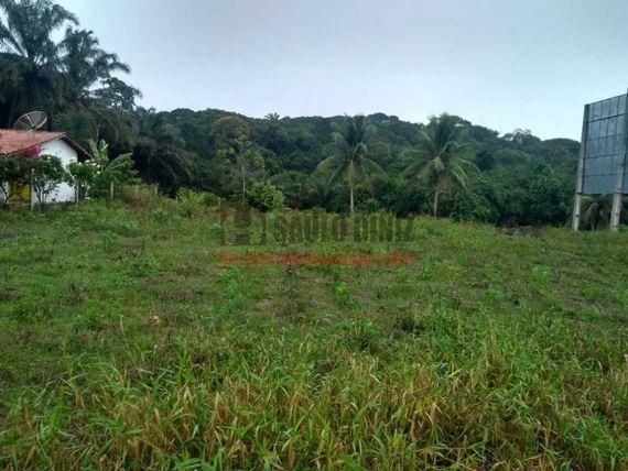 Terreno medindo 40x80 com Rio Perene
