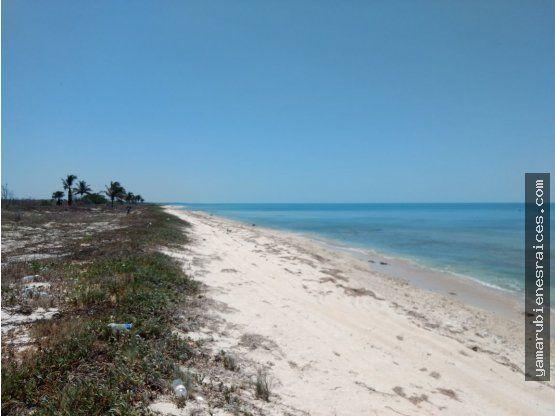 Terreno con Playa Carretera Champotón - Islaguada