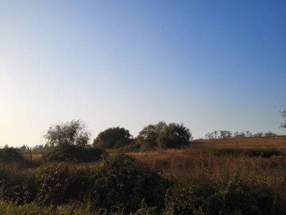 """Oportunidad para lotear terreno  21,07 hectáreas en <span itemprop=""""addressLocality""""><span itemprop=""""streetAddress"""">Pelarco</span></span>"""