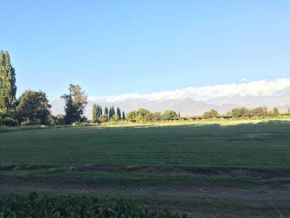 TERRENO AGRICOLA, COMUNA DE RINCONADA, REGION VALPARAISO