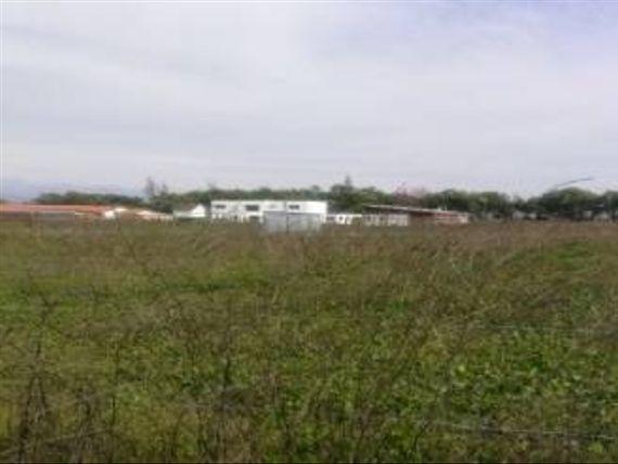 "Terreno 5000 mts Sector Santa Elena | <span itemprop=""addressLocality""><span itemprop=""streetAddress"">Rancagua</span></span>"