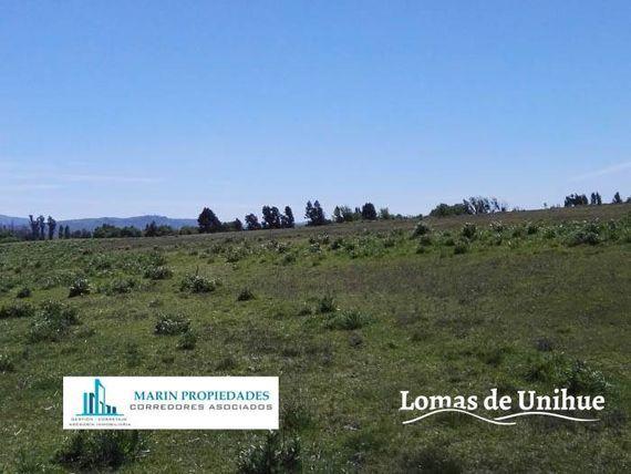 Loteo Lomas de Unihue