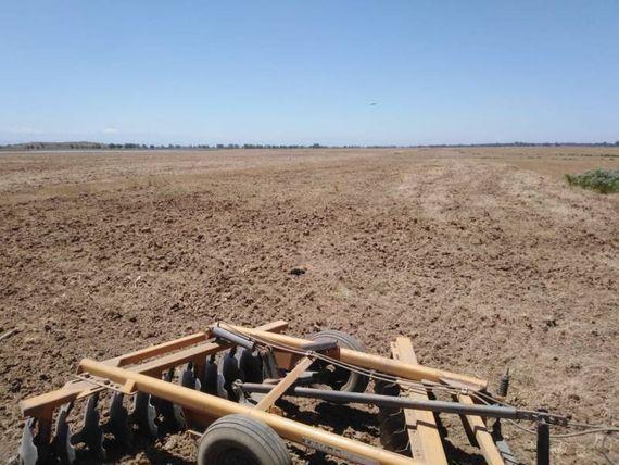 "Excelente terreno agrícola en la comuna de <span itemprop=""addressLocality""><span itemprop=""streetAddress"">Retiro</span></span>"