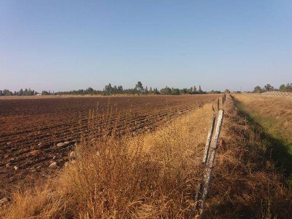 SE VENDE PARCELA AGRICOLA 5,5 HECTAREAS, SAN CLEMENTE