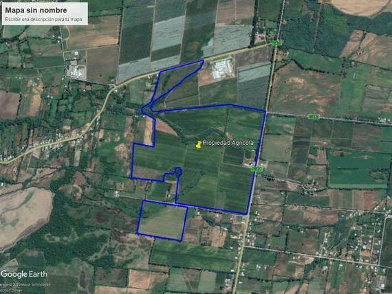 Propiedad Agricola 80 ha