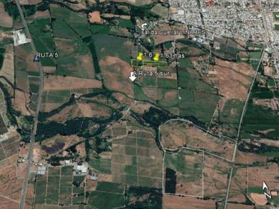 """15000 M2 de terreno <span itemprop=""""addressLocality""""><span itemprop=""""streetAddress"""">Linares</span></span>- Rural, Limite Urbano."""