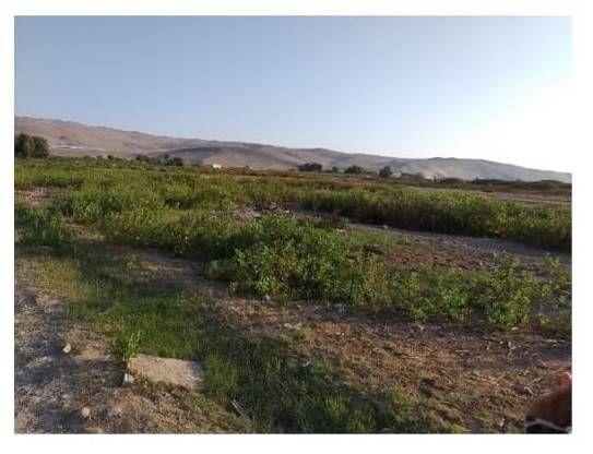 "Venta terreno en Valle Lluta, <span itemprop=""addressLocality""><span itemprop=""streetAddress"">Arica</span></span>"