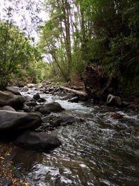 Lindas Parcelas Sector Río Pescado