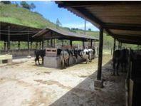 Fazenda em Serra Negra com 31 Alqueires