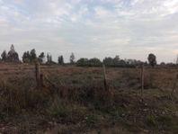 17 hectáreas ubicadas en el Emboque-Higueras