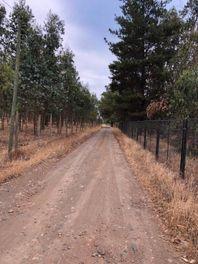 Exclentes terrenos en venta Panguilemo-Talca