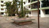 Apartamento residencial à venda, Vila Gilda, Santo André - AP45428.