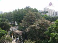 Apartamento para venda e locação, Jardim Europa, São Paulo.