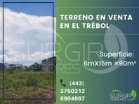 TERRENO EN VENTA EN EL TRÉBOL, SALIDA SALAMANCA $2,167.00xm², El Trébol