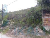 Venta Terreno 19,280 m² Col. Teresa Peñafiel Papantla Veracruz, Teresa Peñafiel