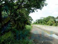 vendo terreno en Sabanillas Tuxpan Veracruz una hectárea, Sabanillas