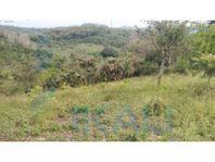 venta terreno 2500 m² tuxpan veracruz camino a Juana Moza, El Triangulo