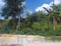 Renta Terreno 4625 m² Colonia Jazmín Tuxpan Veracruz, Jazmín