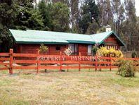 Hermosa cabaña en sector Molco