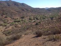 Terrenos en Venta en Valle de Guadalupe PBVRPA01