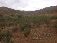 Probien Tijuana Vende Terreno en el Valle de Guadalupe PBVRPA01