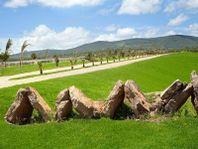 Terreno en Venta en Jonacapa