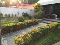 Casa en Renta en Club de Golf Palma Real Ixtapa
