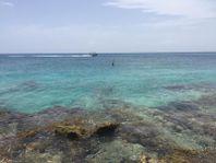 Terreno en Venta en Cozumel Turistico