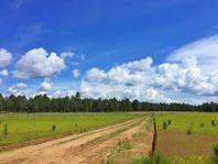 Terreno en Venta en Llano Grande