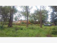Finca/Rancho en Venta en RANCHO DE 22000 M2
