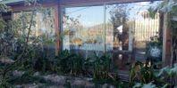 Parcela de 5 hectáreas y media, casa , galpones