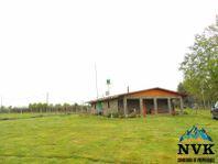 Terreno de 9,2 hectáreas camino a Coihueco