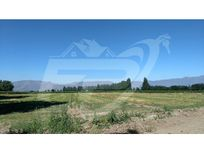 Terreno en Venta límite Calle Larga-Los Andes