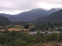 6000 M2 De terreno en Robleria ;Rio Ancoa; LINARES