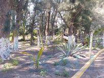 Venta terreno zona restaurantera playa de Tuxpan Veracruz, La Barra Norte