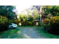 vendo terreno entre Poza rica y Tihuatlán Veracruz terreno de 17.66 hectáreas, Pajaritos
