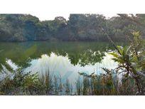 venta terreno 5000 m² frente al estero de Juana Moza 53 m. Tuxpan Veracruz, Isla de Juana Moza