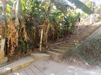 Terreno en Venta en Guadalupe Victoria