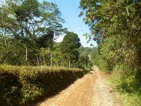 Terreno en Venta en Chopantla