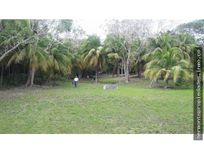 Terreno Bacalar  frente a la laguna 1.8 hectareas