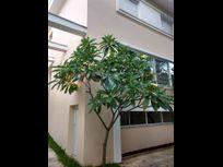 Casa com 3 quartos e Despensa na R Principado de Mônaco, São Paulo, Consolação, por R$ 12.000